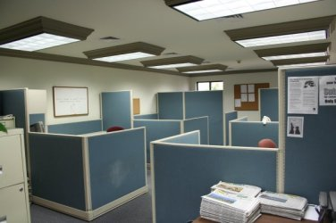 Our office had six cubicles, and usually about half of them were full.